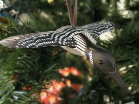 Common Loon in flight - this is a hand-painted wooden ornament that I picked up at a craft fair last summer.